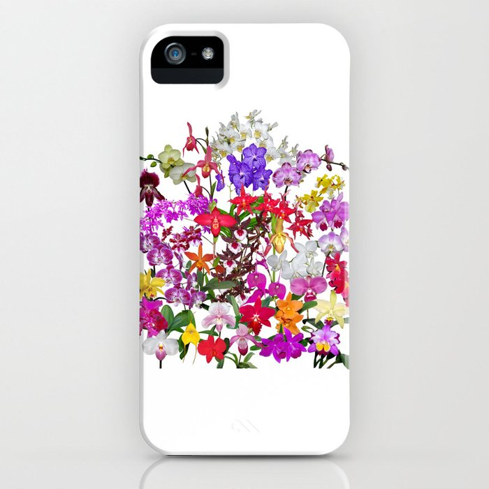 A celebration of orchids iPhone Case