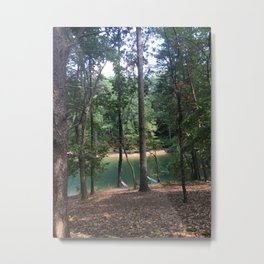 forest lagoon view Metal Print