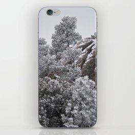 Winter Rock iPhone Skin