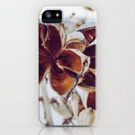 White Orange Flower iPhone Case