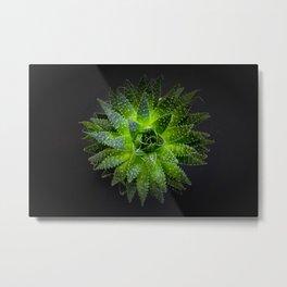 Shiny green Metal Print