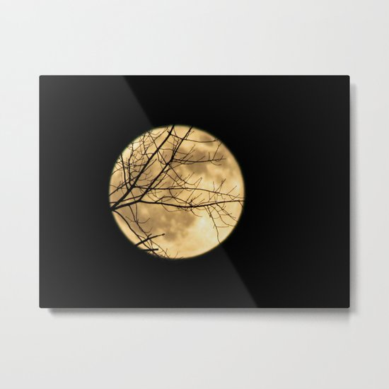 Shadows on the Moon Metal Print