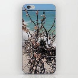 Sea Shell Samba I iPhone Skin