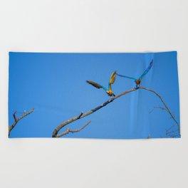 Birds from Pantanal Arara canindé, juntos é bem melhor Beach Towel