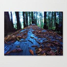 Blue Wood Redwood Canvas Print