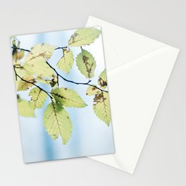 bight summer laves Stationery Cards