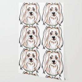 Maltese Dog Malta Lion Puppy Doggie Dog Present Wallpaper