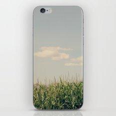 Campos de maíz iPhone & iPod Skin
