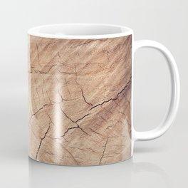fractures Coffee Mug