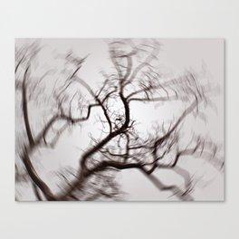About a bird Canvas Print