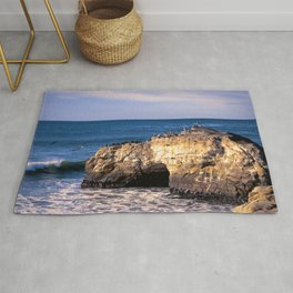 Natural Bridges, Santa Cruz Rug