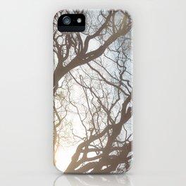 Dream Trees iPhone Case