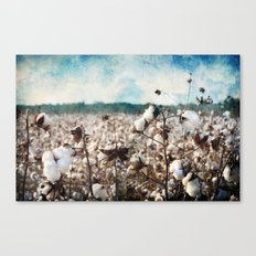 Blue skies and open fields Canvas Print