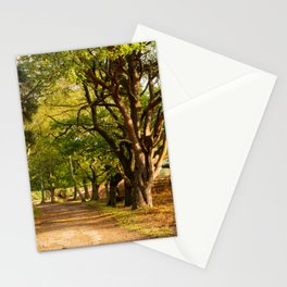Trail Through the Woods Stationery Cards