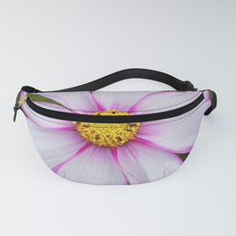 Winter Cosmos Flower in Pink 7 Fanny Pack