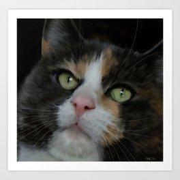 Cat Thoughts? Art Print