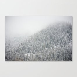 Snowy Pacific Northwest Forest Canvas Print