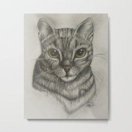 Leo the cat Metal Print