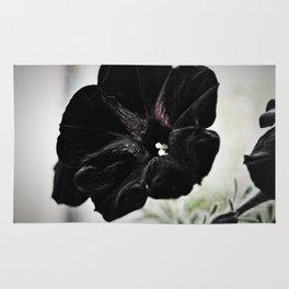Black Velvet Rug