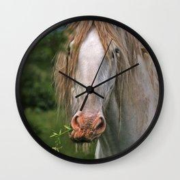 White heavy horse Wall Clock