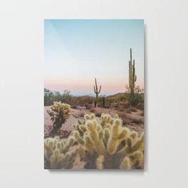 Arizona Cactus Sunset Metal Print