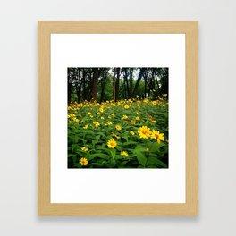 Happieness  Framed Art Print