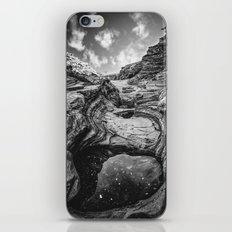 Planet Big Bend iPhone & iPod Skin