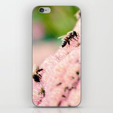 Bees on Flowers iPhone & iPod Skin
