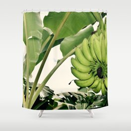 Costa Rican Bananas Shower Curtain