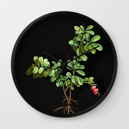 Vintage Lingonberry Botanical Illustration on Black (Portrait) Wall Clock