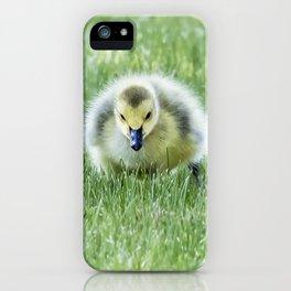 Gosling iPhone Case