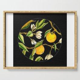 Orange Tree Circular Illustration Design On Textured Black Background Serving Tray