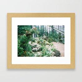 Greenhouse jungle Framed Art Print