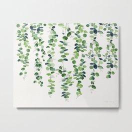 Eucalyptus Garland  Metal Print