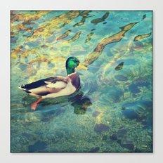 Quack;) Canvas Print