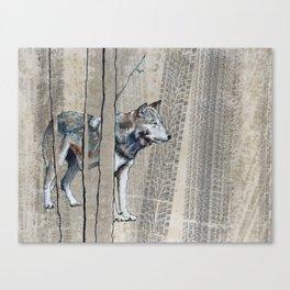 Timberland Canvas Print