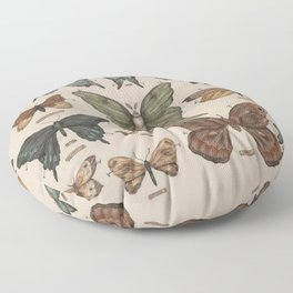 Butterflies and Moth Specimens Floor Pillow