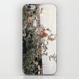 Salmon Flowers against White iPhone Skin