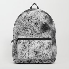 Paw Print in Snow Backpack