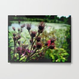 Pond-side Attraction Metal Print