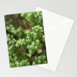 Anything goes with green. Stationery Cards