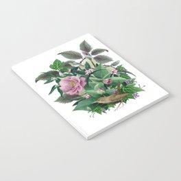Garden Wren Notebook
