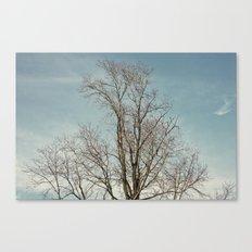 withwinter Canvas Print