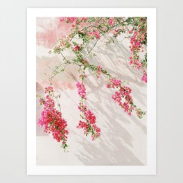 Sunkissed pink flowers on textured wall Art Print