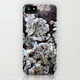 Smattering of Lichens iPhone Case
