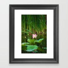 Lotus Blossom Flower 18 Framed Art Print