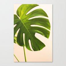 Verdure #9 Canvas Print