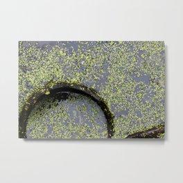pond(er)ing Metal Print