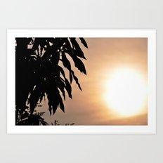 Mango Art Print