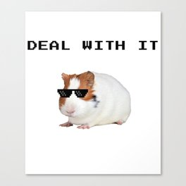 Funny Guinea Pig Meme Canvas Print